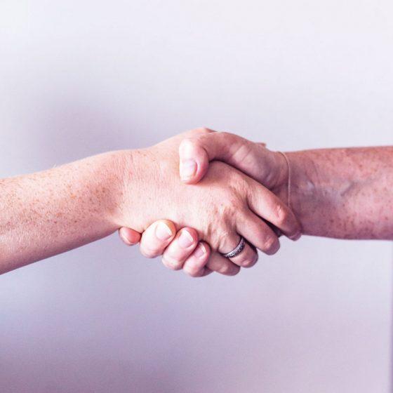Methodenvielfalt, Gesprächstherapie im Einzel-, Kleingruppen- und Gruppensetting